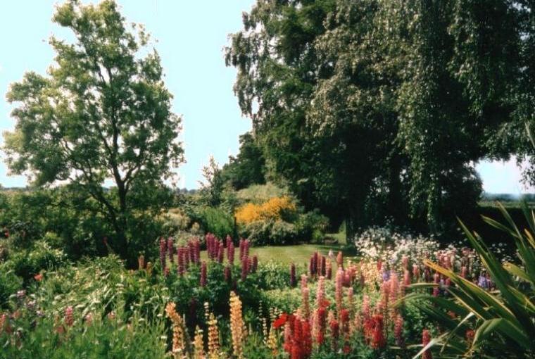 Idyllic country cottage garden