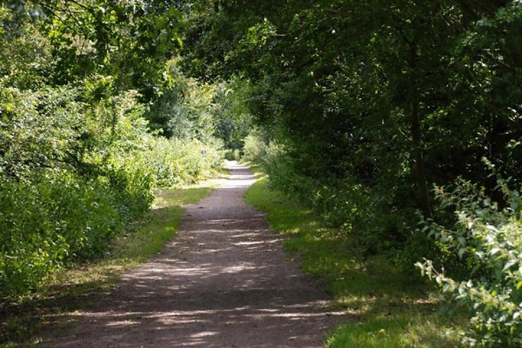 Lots of countryside walks