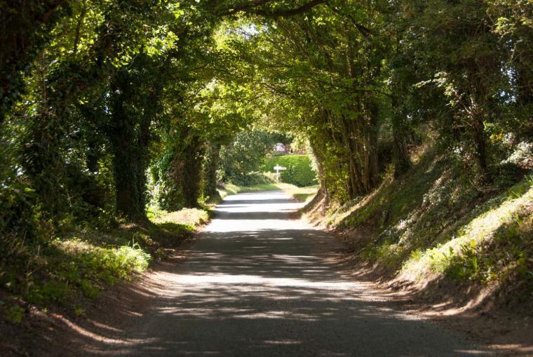 Explore idyllic Suffolk