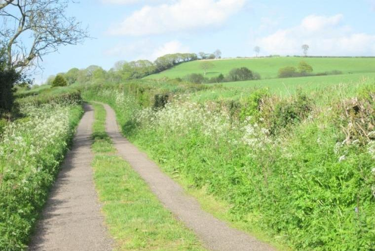 Country lanes to wander along