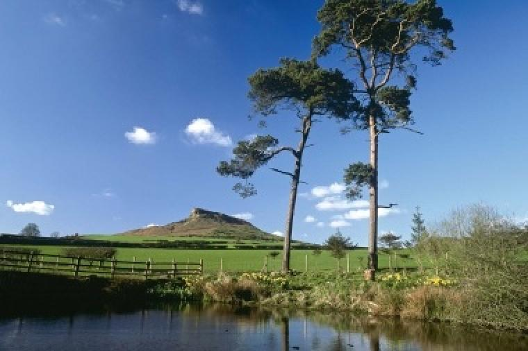 If you are feeling fit enjoy the walk/hike up Roseberry topping and enjoy the amazing view