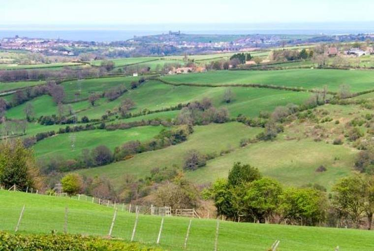 The North Yorkshire Moors