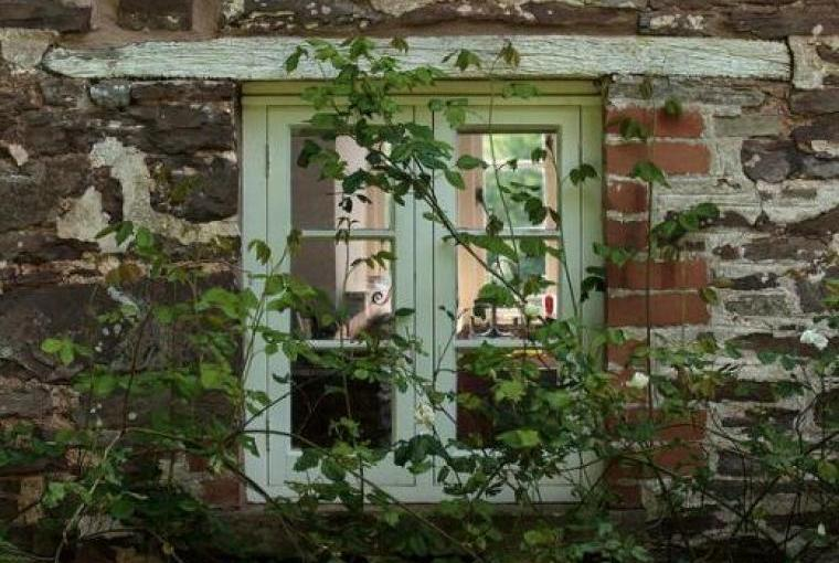 Cefn Y Waun - Cottage in the Woods, Powys, Photo 4