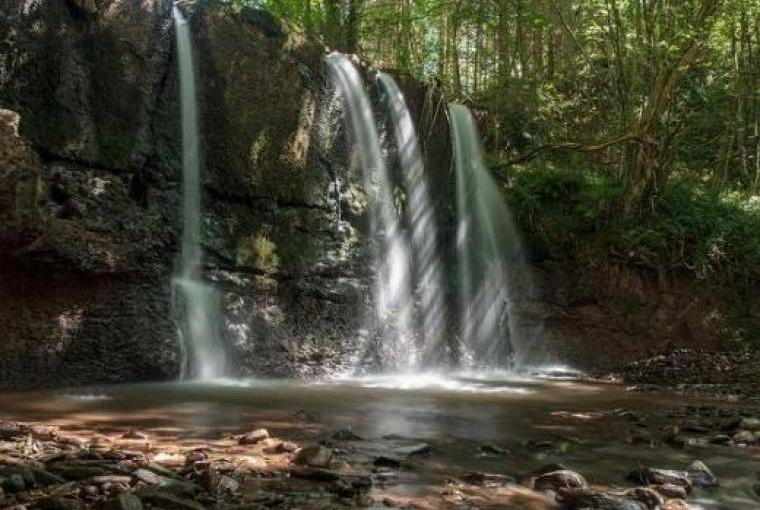 Beautiful Waterfalls in the Private Woodland