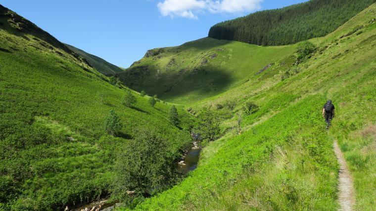 Cambrian Mountains Walks