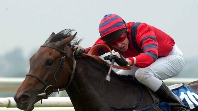 Carlisle & Hexham race course