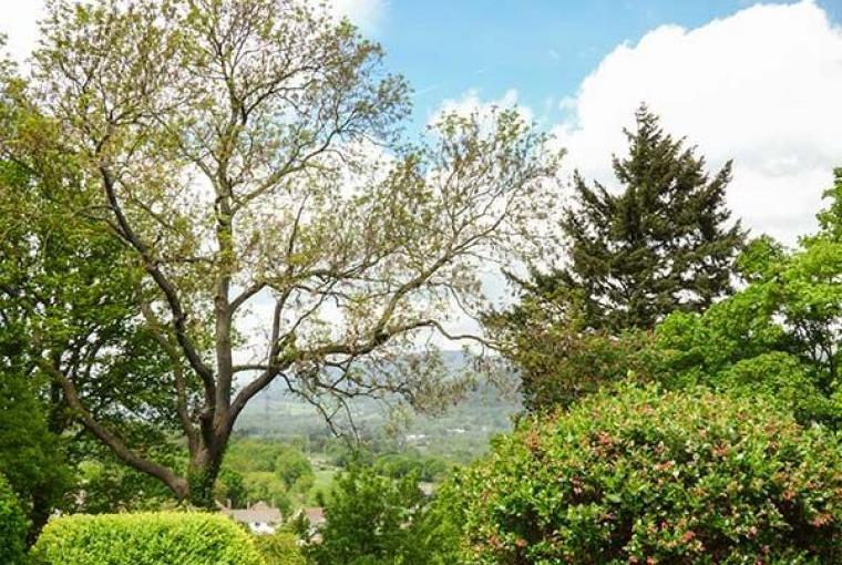 Treetops Rural Retreat, Cheshire, Photo 19