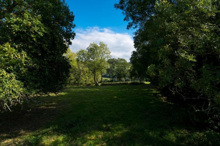 Beautiful grounds at the Highbullen Estate