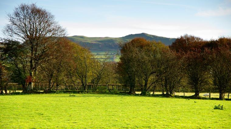 View of Pen y Bannau hill fort from kitchen