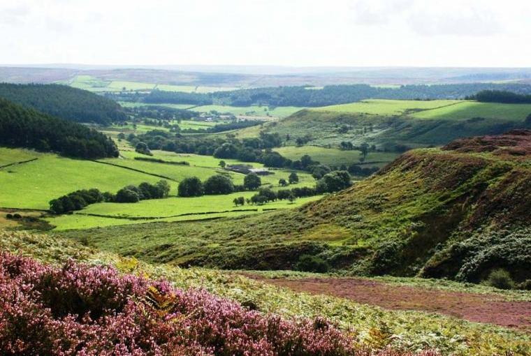Somerset's stunning countryside