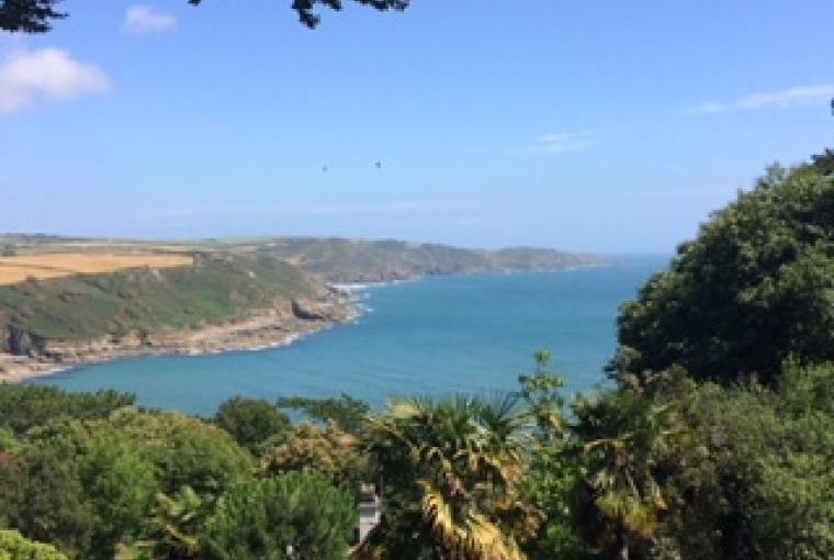View of the Salcombe Estuary