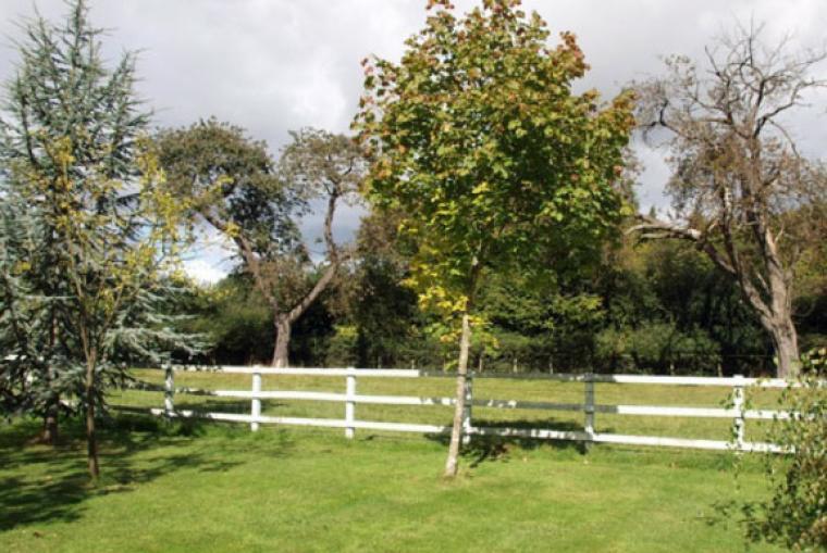 Garden at Lower Bassibones Barn