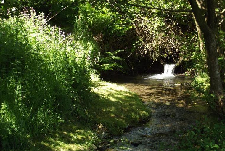 Stream for dam building