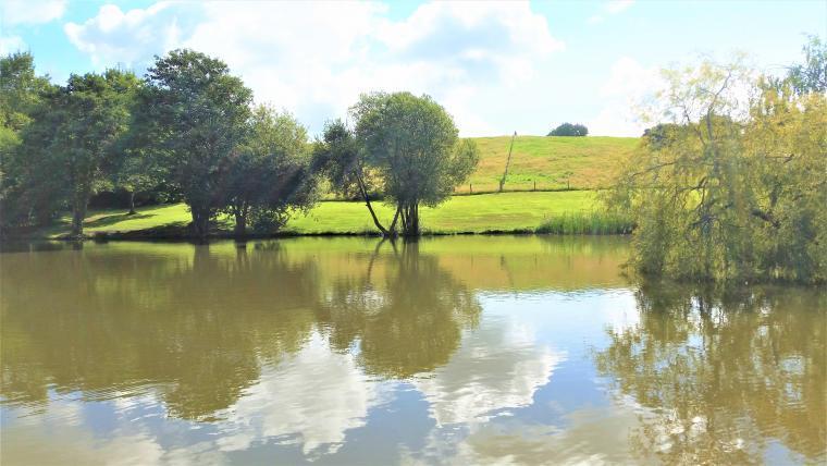 Tranquil rural location