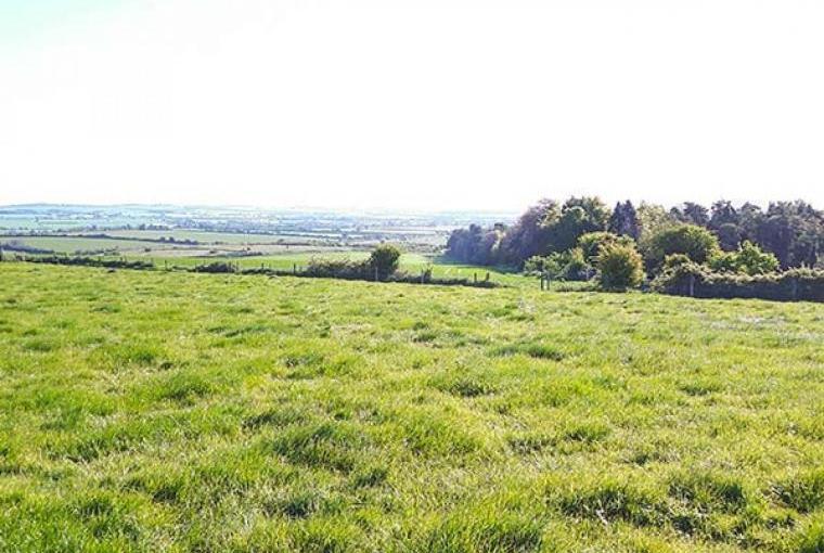 Surrounding countryside