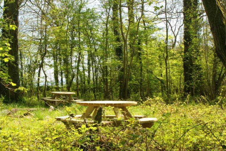 Enjoy the rural setting