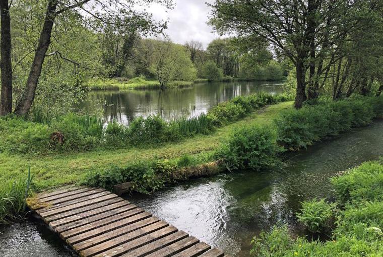 Langford Fishing Lake