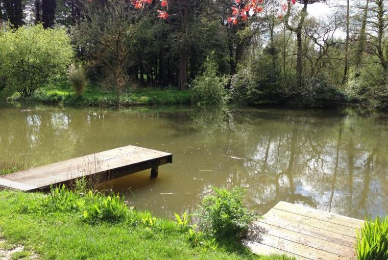 Fishing lake on the estate