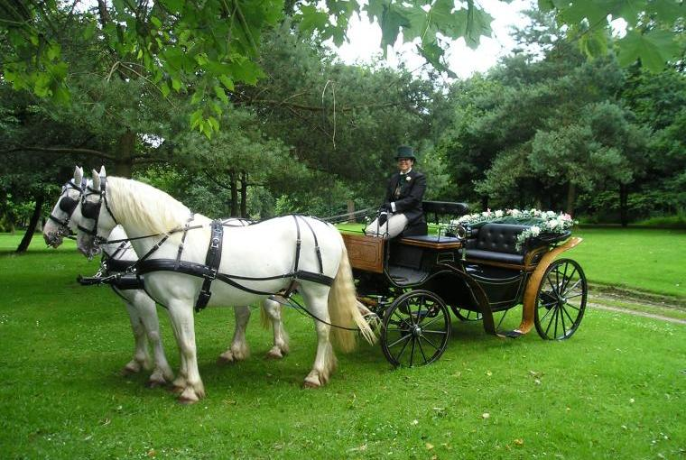 Carriage rides and weddings at Cossington Park