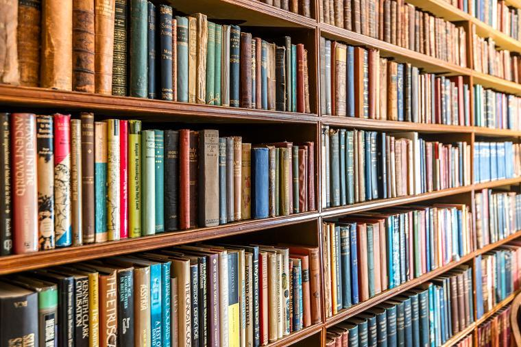 A selection of the 5000 books at Cossington Park