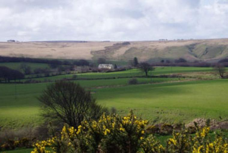 Beautiful views of the Somerset countryside from the holiday cottages