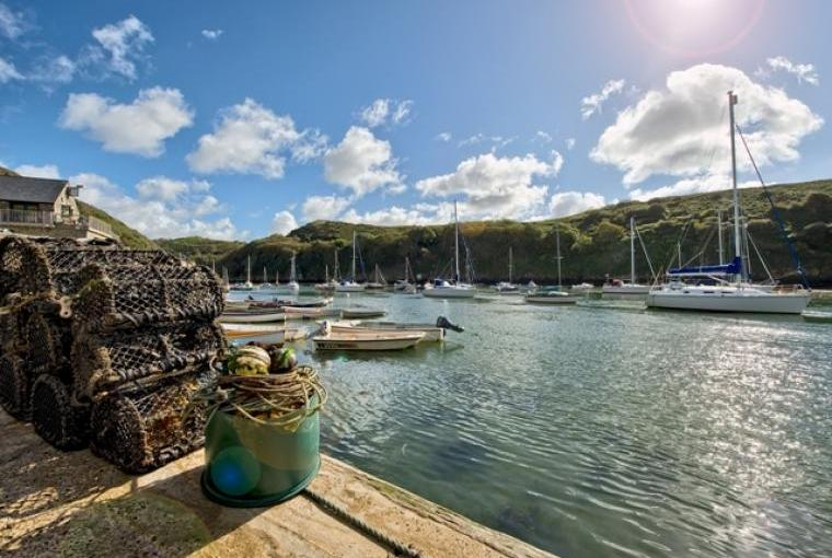 Stunning location, one mile from Solva harbour