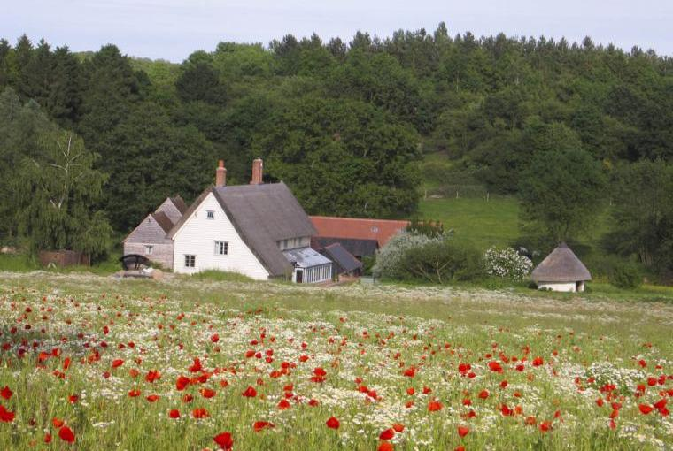 The Mill and Mill Cottage in its own valley