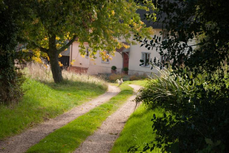 Mill Cottage cart-track