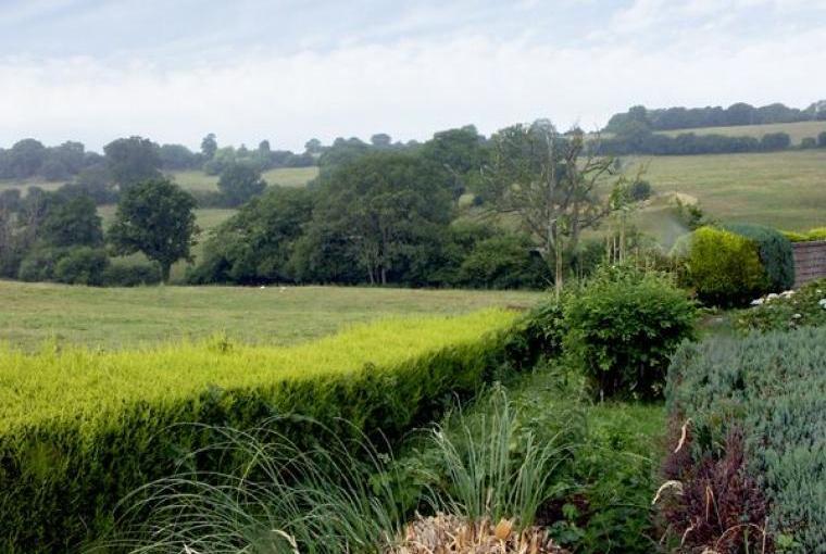 Ryecross Rural Retreat near Shaftesbury, Cheshire, Photo 2