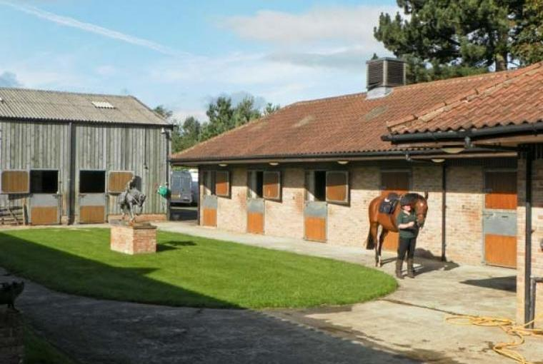 Thoroughbred stables next door