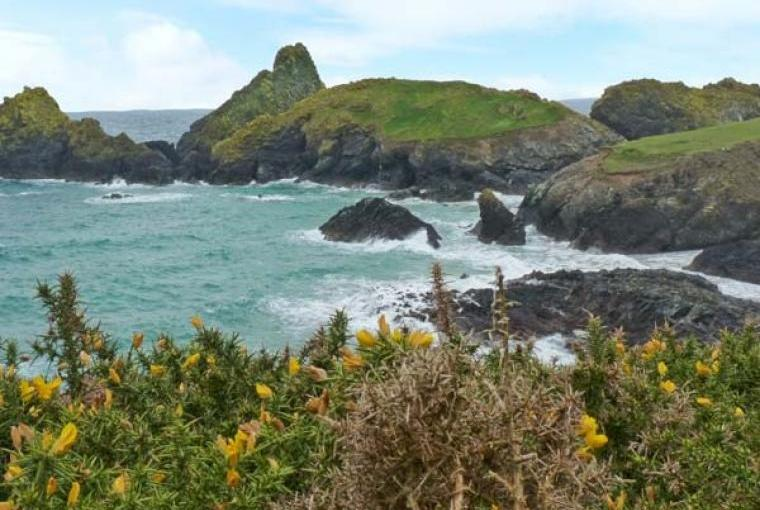 Discover the Cornish Coast nearby