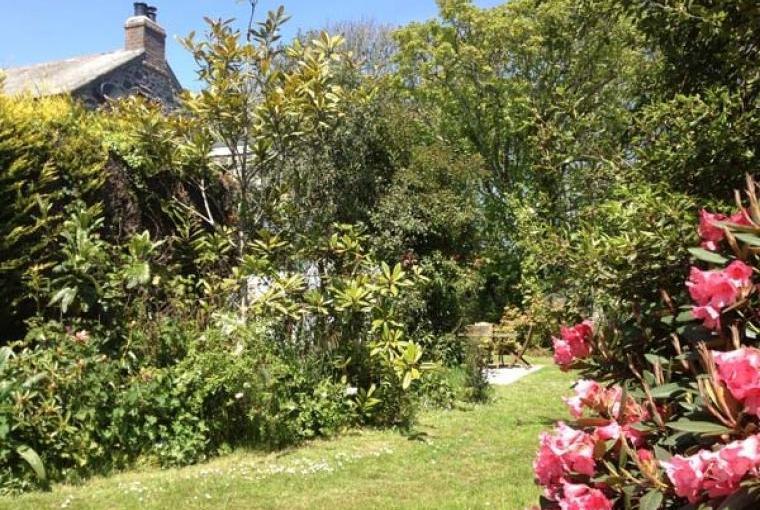 Beautiful shared gardens