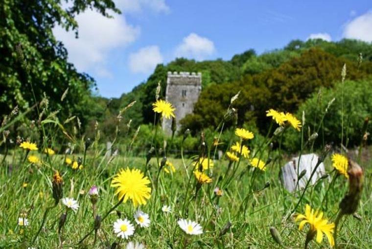 Y Cartws Farm-Stay, Pembrokeshire Coast National Park, Cheshire, Photo 12