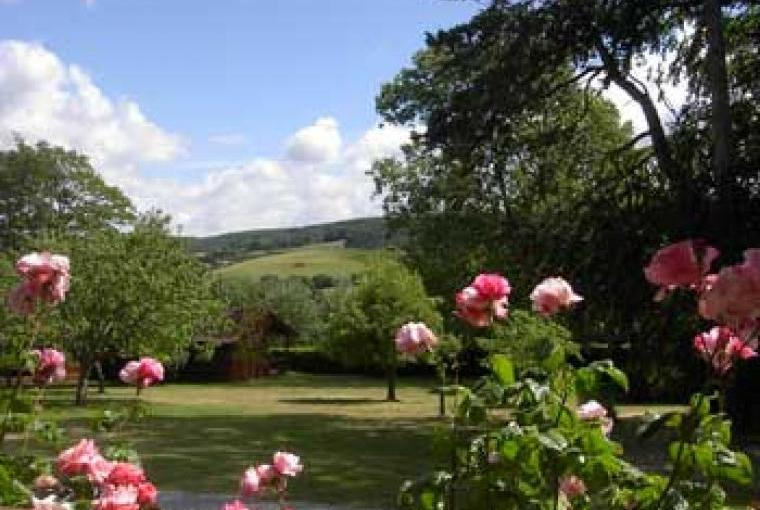 Woodcombe Lodges - Somerset