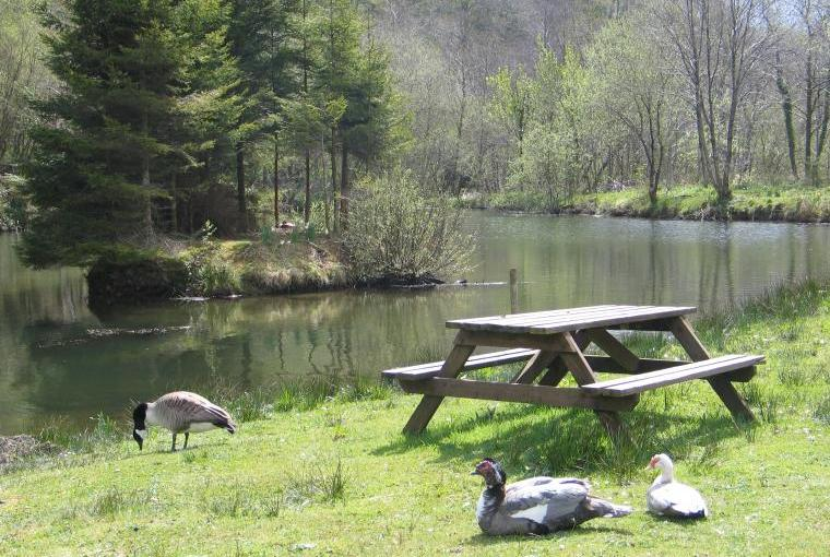 Picnic by the lakes, peace and tranqulitiy