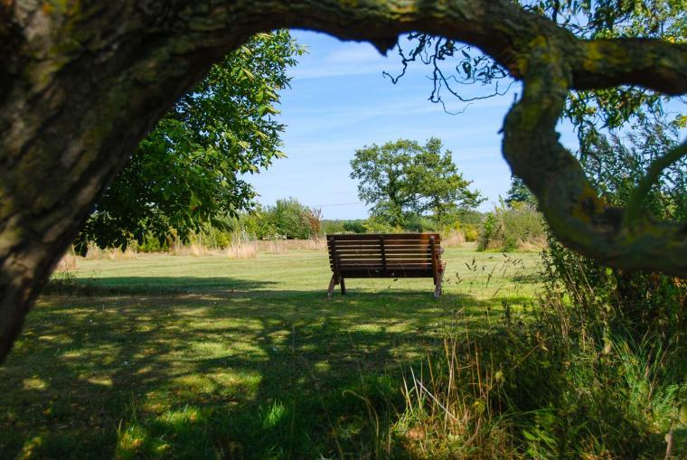 Large orchard to relax in and let your dog run free