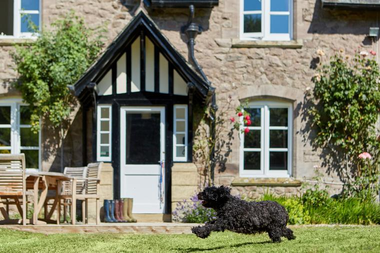 Pet friendly cottage in Lyonshall