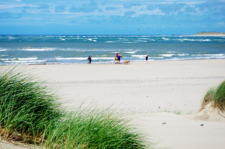 Ynyslas beach and sand dunes (25 miles from Rhoslwyn)