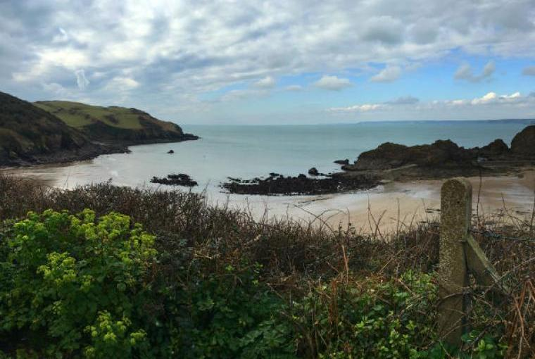 Views of Hope Cove Beach