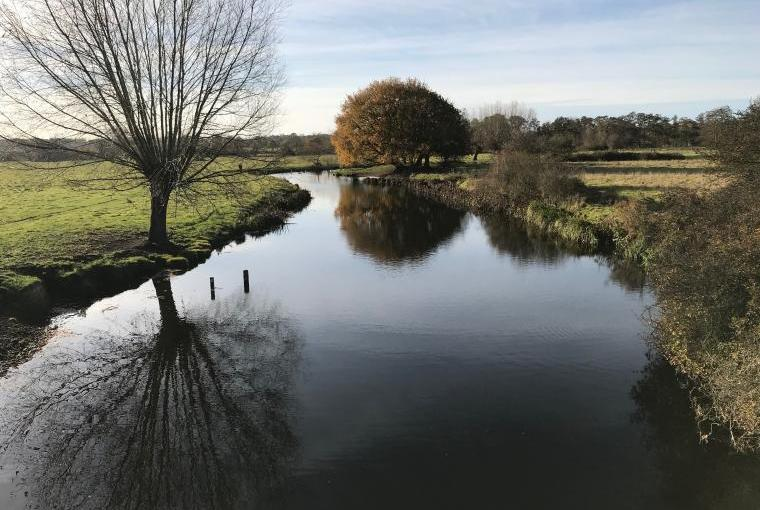 Walks Along the River Stour are Magnificent All Year Round