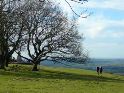Wendover Countryside by Coombe Hill